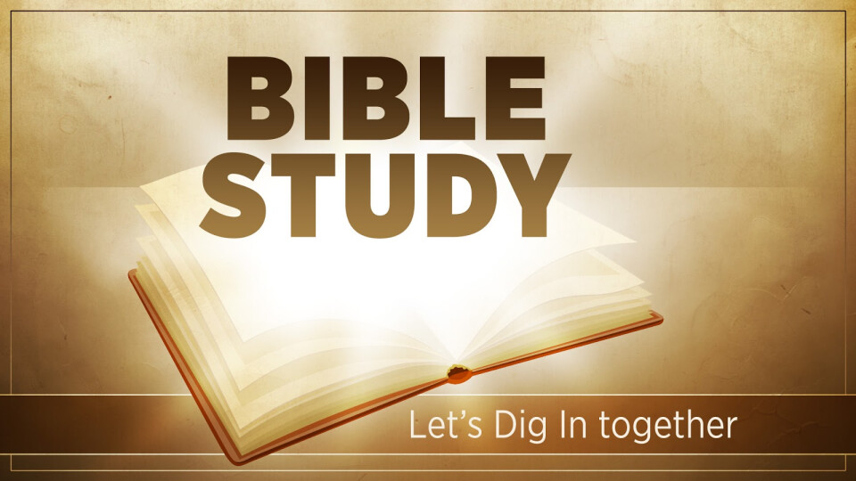Faith Alive Bible Study
